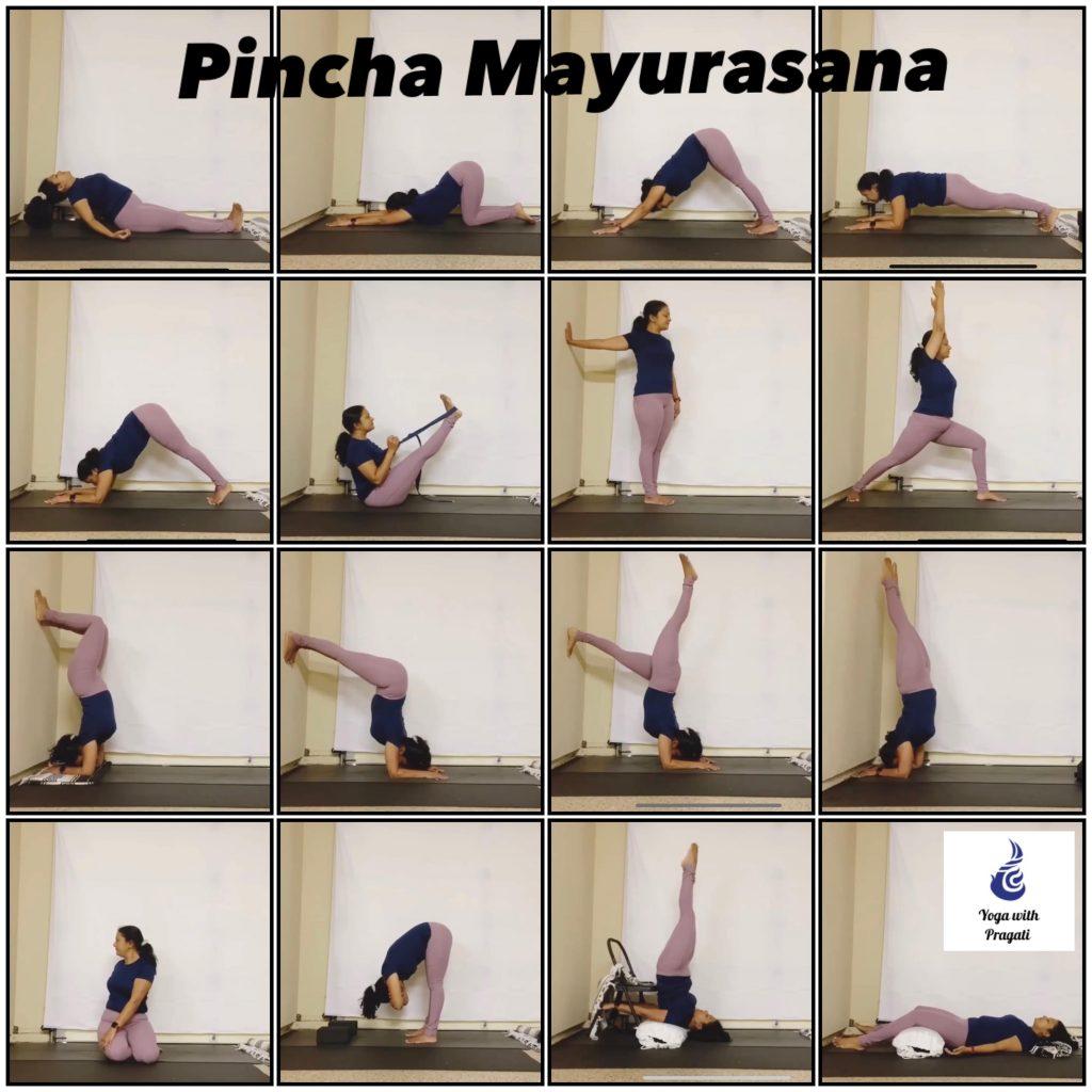 Suggested sequence for Pincha Mayurasana practice: